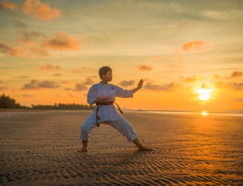 A Look at Martial Arts Workouts