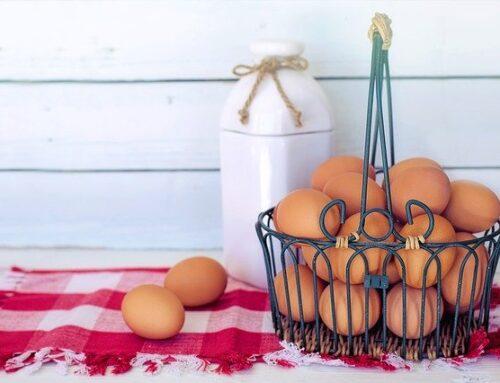 Eggchilda